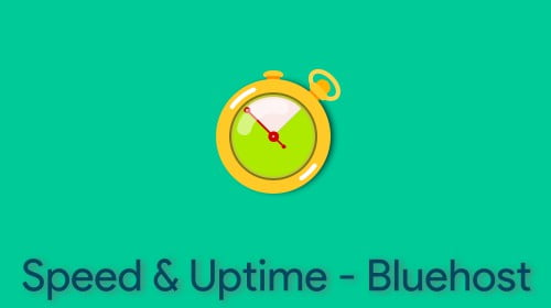 Speed and Uptime Bluehost Hosting